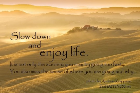 slow-down-enjoy-life-quotes-only-scenery-miss-29-705284