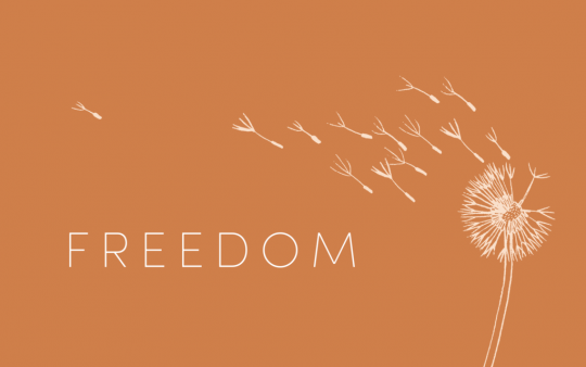 Freedom-Title-1024x640
